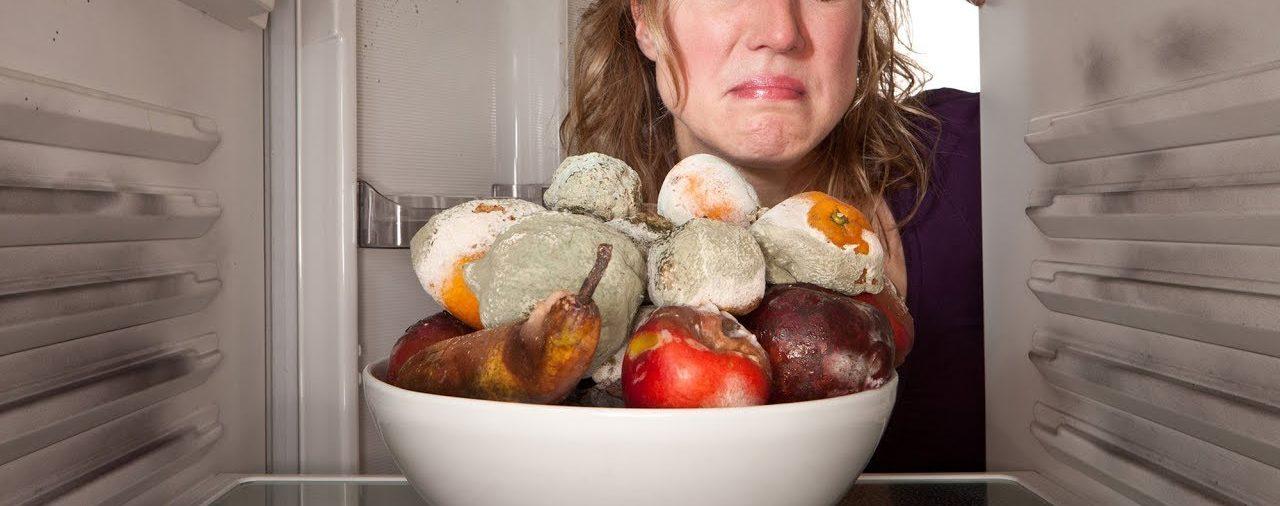 протухли продукты в холодильнике